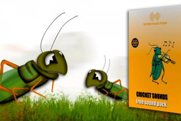 Sonidos de grillos: descárgate gratis Cricket Sounds Packs de Orange Free Sounds